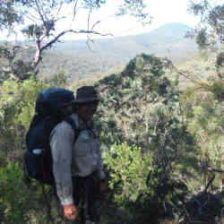 A man standing with a pack on in the bush Yengo National Park