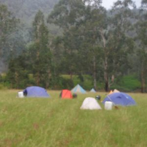 Barrington River reserve camp site with tents on the grass
