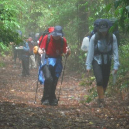 Two people are walking up a hill on the Barrington Tops Bushwalking Adventure